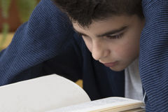 Boy studying book Stock Image