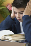 Boy studying book Stock Photography