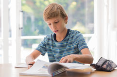 Young boy studying Royalty Free Stock Photo