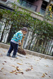 Young boy sweeping leaves Stock Photos