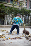 Young boy sweeping leaves Stock Photography