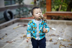 Young boy sweeping leaves Stock Image