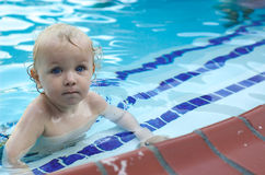 Young boy in swimming pool. Young toddler boy in swimming pool Stock Photos