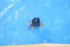 Young boy swimming on the pool Royalty Free Stock Image
