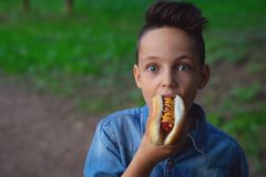 A young boy takes a bite of a hot dog royalty free stock photo