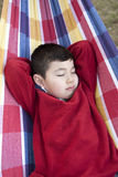 Boy takes a nap on hammock. Royalty Free Stock Photography