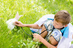 Young boy taking care of little rabbit outdoors Royalty Free Stock Images