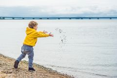 Young boy throwing stones in sea water.  Royalty Free Stock Images