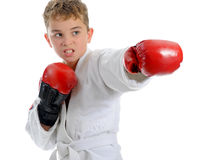 Young boy training karate. Royalty Free Stock Image