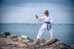 Young boy training karate Stock Photos