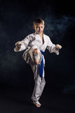 Young boy training karate Royalty Free Stock Photo