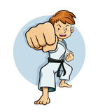 Young Boy Training Karate Royalty Free Stock Photos
