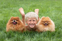 Young boy with two dogs. Are lying on the grass royalty free stock photos