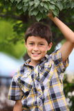 Young boy under a tree Royalty Free Stock Photos