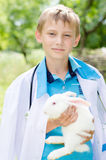 Young boy veterinary and little rabbit Royalty Free Stock Images