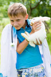Young boy veterinary & little rabbit happy smiling Royalty Free Stock Photo