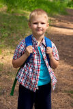 Young boy walking in forest Royalty Free Stock Image