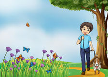 A young boy walking with his pet Stock Image
