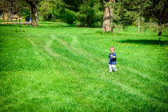 Young Boy Walking in a Park Holding a Dandelion Flower Stock Photography