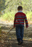 Young Boy Walking with Stick. Young boy is walking along a wooded path.  He is holding a stick.  It is autumn and there are leaves on the ground Stock Image