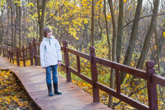 Young boy walking on a wooden pathway in a beautiful autumn park Stock Photography