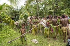 Young boy wants to be like dancer, drummer or pan flute musician Solomon Island, South Pacific Ocean. Young costumed boy with idols playing for ceremony on Royalty Free Stock Photos