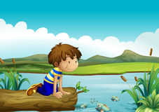 A young boy watching the fishes Stock Images