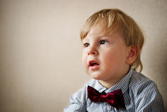 Young Boy Wearing Bow Tie Smiling and Looking Up. Against Plain Wall with Copyspace Stock Image