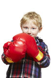 Young boy wearing boxing gloves smiling. On white background Royalty Free Stock Photography