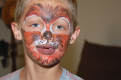 Young Boy Wearing Face Paint Tiger Design stock photo