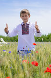 Young boy wearing traditional ukraine clothes in wheat and poppy field Stock Photo