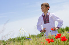 Young boy wearing traditional Ukraine clothes in wheat and poppy field Royalty Free Stock Photo