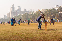 Young boys playing Cricket royalty free stock images