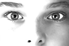 Young Boys Stare. A young boy's stare in black and white Royalty Free Stock Image