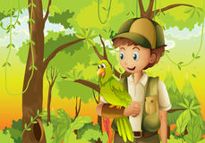 A young boyscout with a parrot. Illustration of a young boyscout with a parrot Royalty Free Stock Images