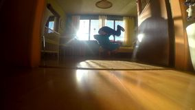 Young breakdancer in the room, 4K stock video footage