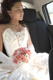 Young bride royalty free stock photo