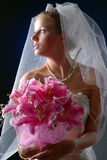 Young bride Stock Images