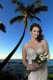 Young Bride on Beach. Stock Photography