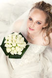 Young bride with bouquet of roses Stock Image