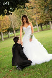 Young bride with bridegroom. Young bride and the bridegroom in the park stock photography