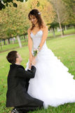 Young bride with bridegroom. Young bride and the bridegroom in the park stock photos