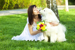 Young bride and the dog Stock Photography