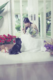 Young bride and Dog Royalty Free Stock Photos