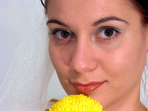 Young bride with flower. Portrait of a young bride with a yellow flower Royalty Free Stock Photo