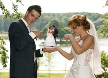 Young  Bride And Groom. Posing together Stock Photos