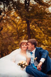 Young bride and groom on the background of autumn landscape Royalty Free Stock Photos