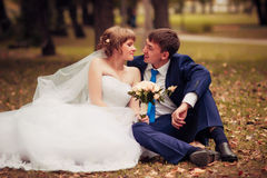 Young bride and groom on the background of autumn landscape Stock Images