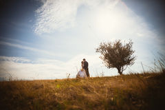 Young bride and groom on the background of field Stock Image
