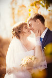Young bride and groom on the bluer background Royalty Free Stock Photo